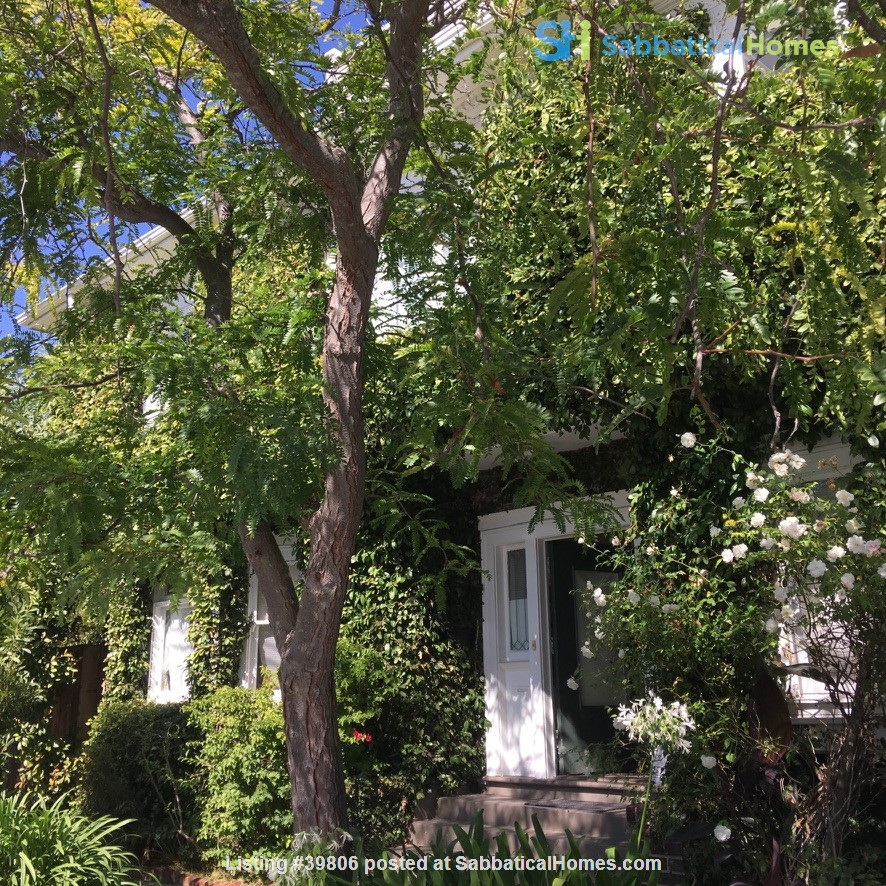 Secluded Elmwood Edwardian 8 blocks  to UC Berkeley & 2 to College Ave. Home Rental in Berkeley, California, United States 0