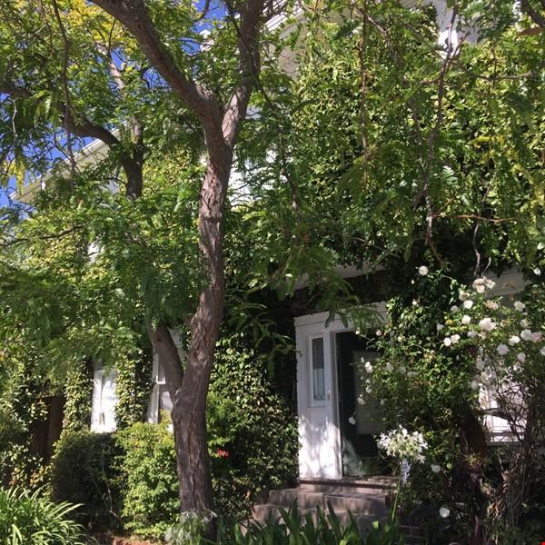 Secluded Elmwood Edwardian 8 blocks  to UC Berkeley & 2 to College Ave. Home Rental in Berkeley 0 - thumbnail