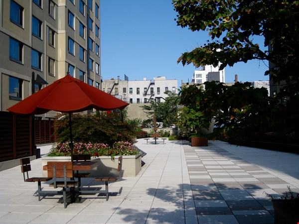 Zen 2BD/2BA Condo in Luxury Building w/Gym, 2 Rooftop Terraces, Harlem NYC Home Rental in New York 1 - thumbnail
