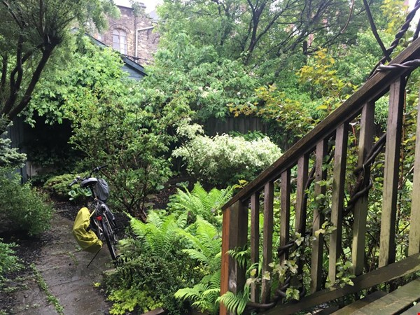 listing image for Spacious, sunny 1 BR apt with huge deck in Annex (Bloor Bathurst) House