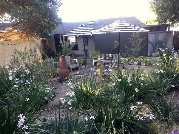 1920's California Bungalow, Pvt. 1 bdrm, bath, kitchenette, and entrance Home Rental in South Pasadena 6 - thumbnail