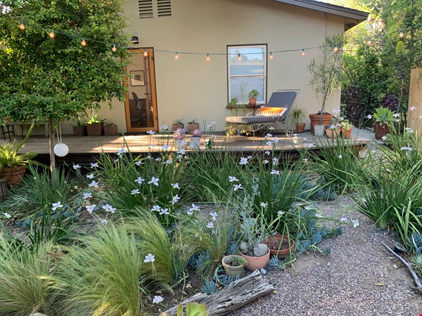 1920's California Bungalow, Pvt. 1 bdrm, bath, kitchenette, and entrance Home Rental in South Pasadena 1 - thumbnail