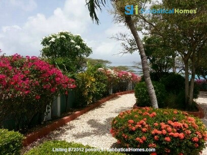 Ocean Front Snorkeling Paradise at Spanish Lagoon Home Rental in Savaneta, , Aruba 2