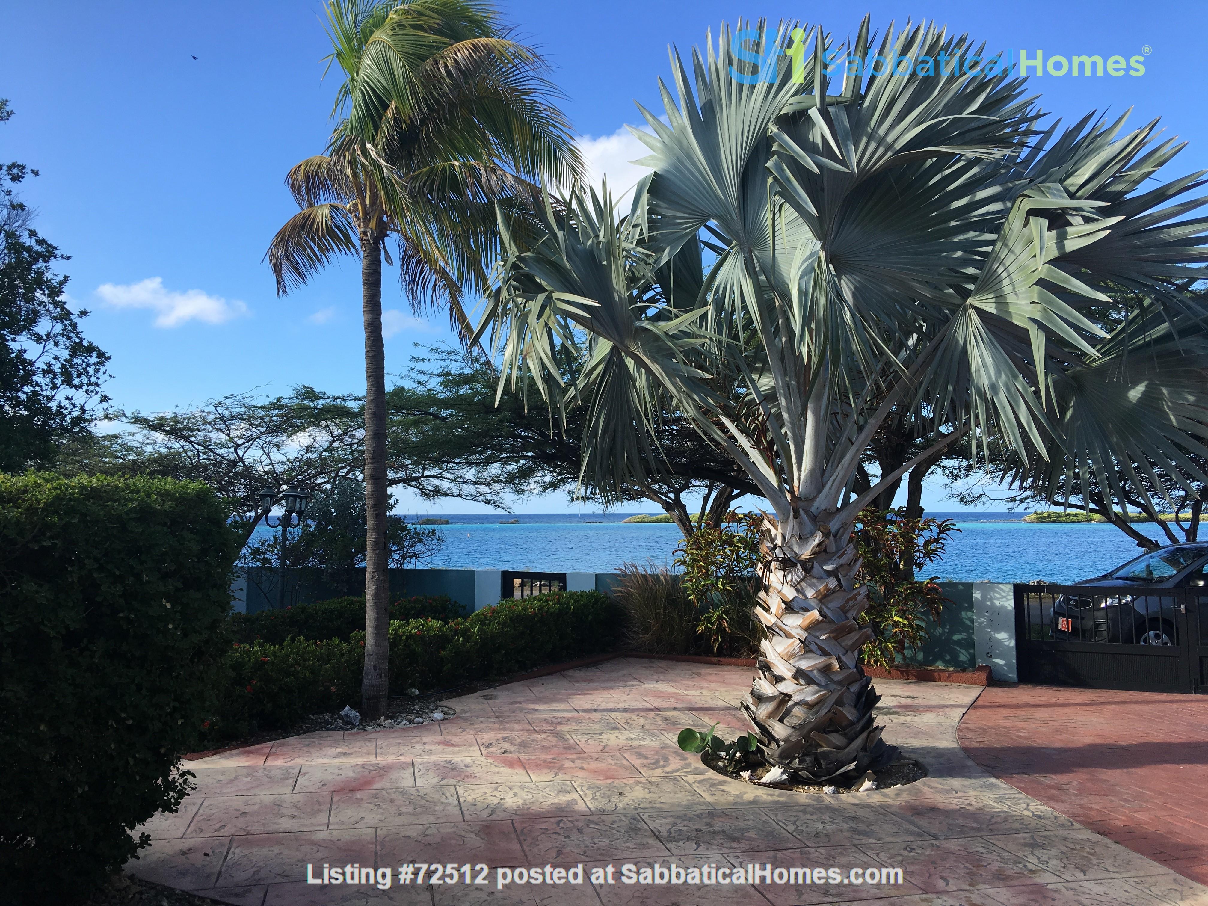 Ocean Front Snorkeling Paradise at Spanish Lagoon Home Rental in Savaneta, , Aruba 3