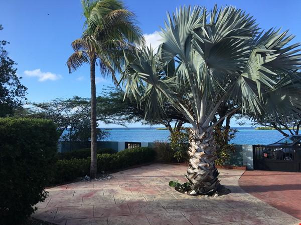 Ocean Front Snorkeling Paradise at Spanish Lagoon Home Rental in Savaneta 3 - thumbnail
