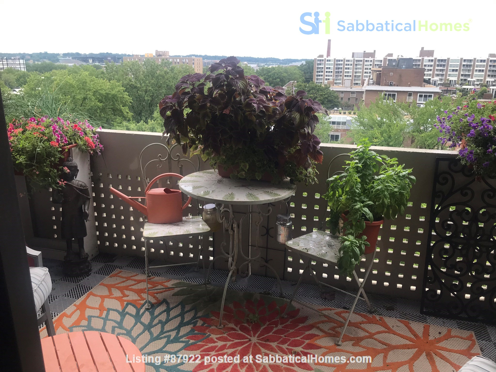 Waterfront DC, spacious, fully furnished, one bedroom condo. Home Rental in Washington, District of Columbia, United States 0