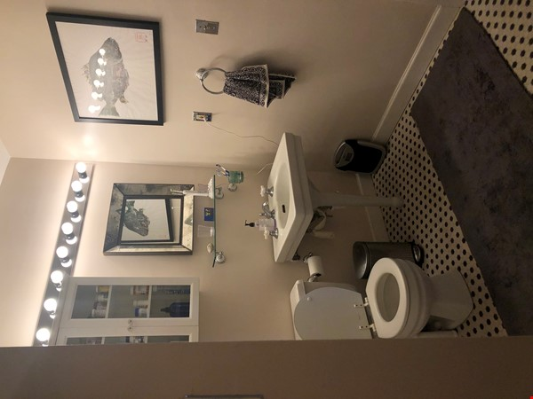 Elegant light-filled 2 bedroom condo NW D.C. Home Rental in Washington 6 - thumbnail
