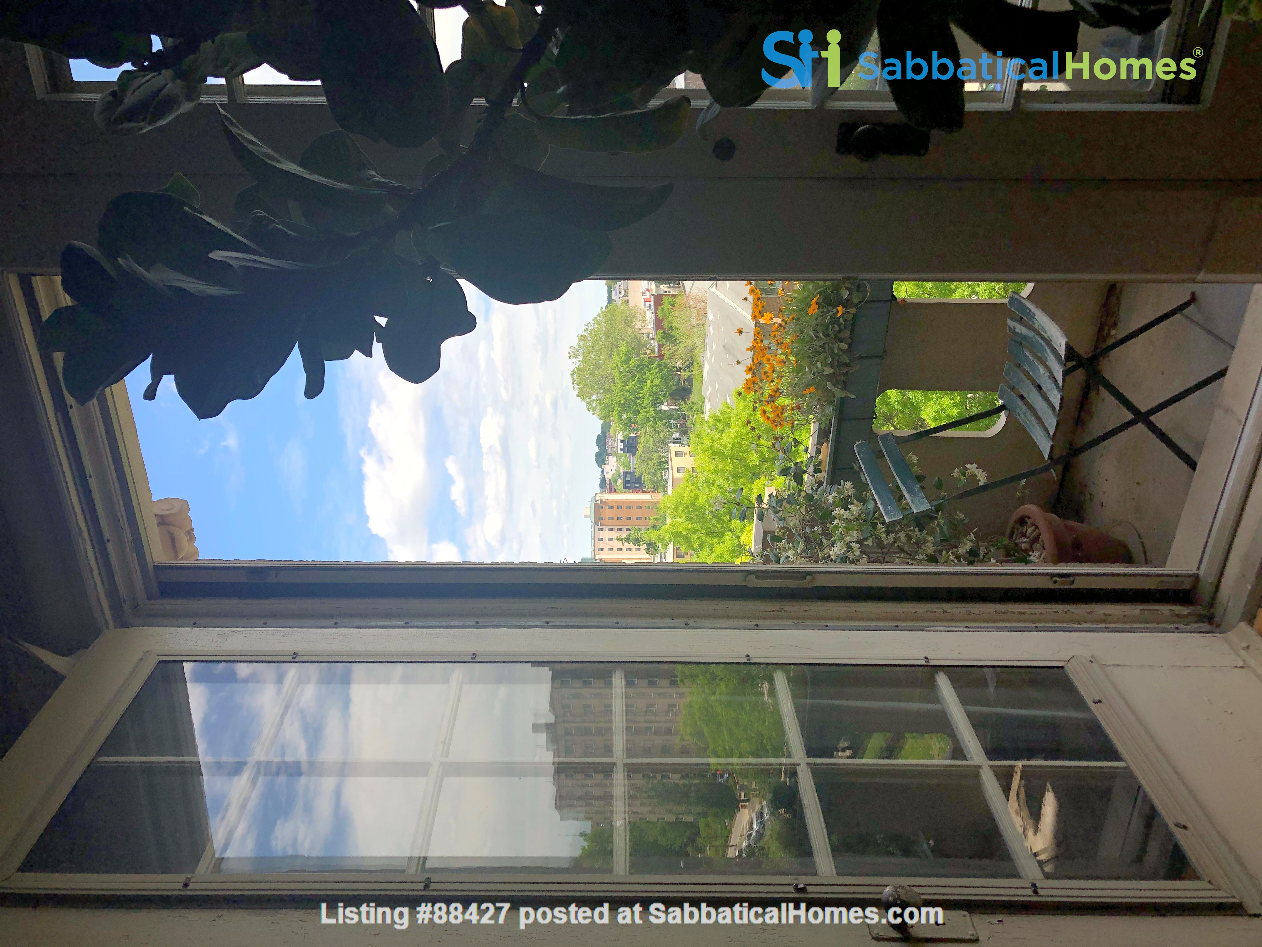 Elegant light-filled 2 bedroom condo NW D.C. Home Rental in Washington, District of Columbia, United States 9