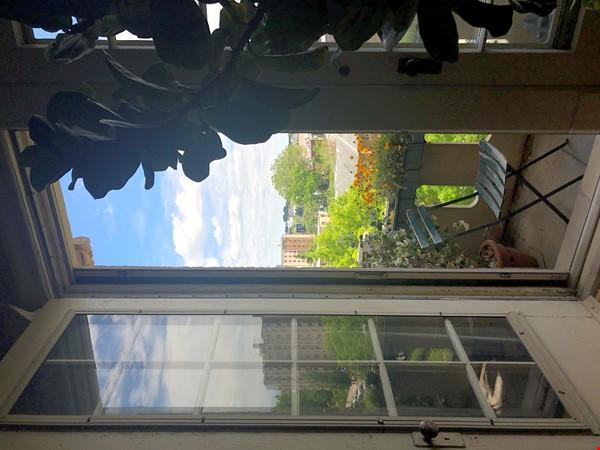Elegant light-filled 2 bedroom condo NW D.C. Home Rental in Washington 9 - thumbnail