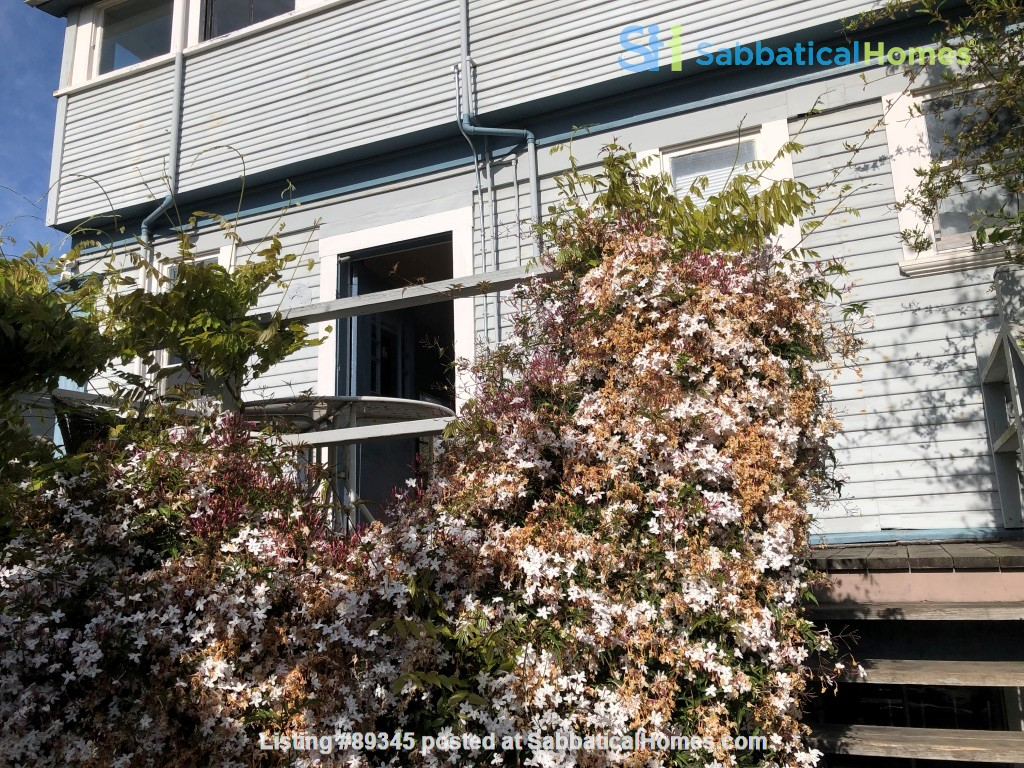 Beautiful Victorian duplex walking distance to UC Berkeley! Home Rental in Berkeley, California, United States 9
