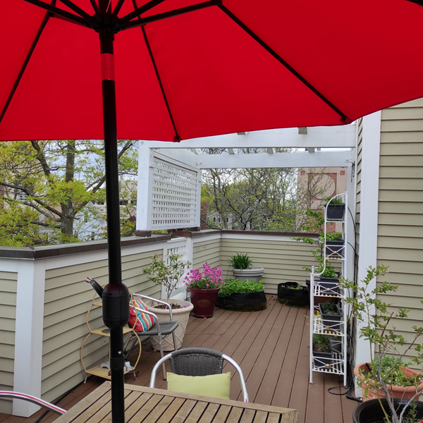 Beautiful Summer Rental 2 bedrms 3 baths + study + deck.  Cleaning included Home Rental in Cambridge 5 - thumbnail