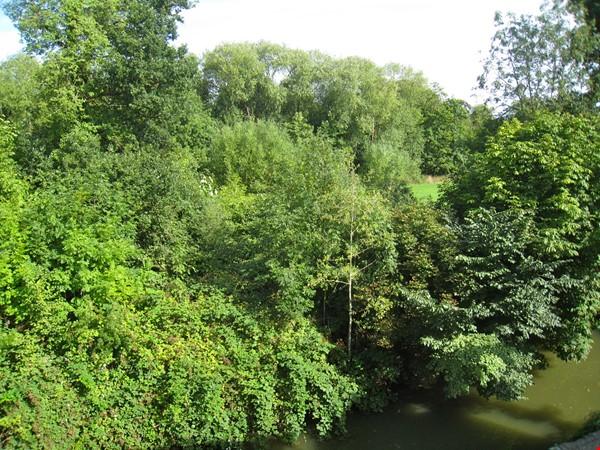 C E N T R A L  O X F O R D :  ROMANTIC RIVERSIDE STUDIO nr Magdalen Deer Pk Home Rental in Oxford 9 - thumbnail