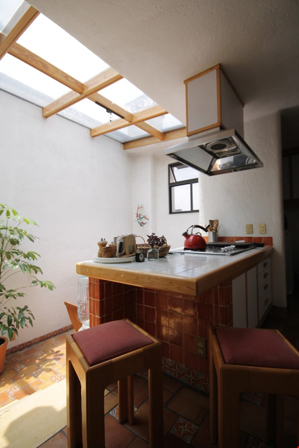 BEAUTIFULLY UNIQUE, LIGHT-FILLED 2 BD/2 BA IN ROMA NEIGHBORHOOD Home Rental in México D.F. 4 - thumbnail