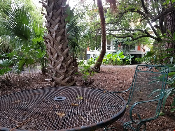 Historic Farmhouse Near Tulane/Loyola Universities Home Rental in New Orleans 8 - thumbnail