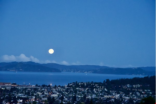 North Berkeley Hills House Near Campus with Panoramic Views Home Rental in Berkeley 0 - thumbnail
