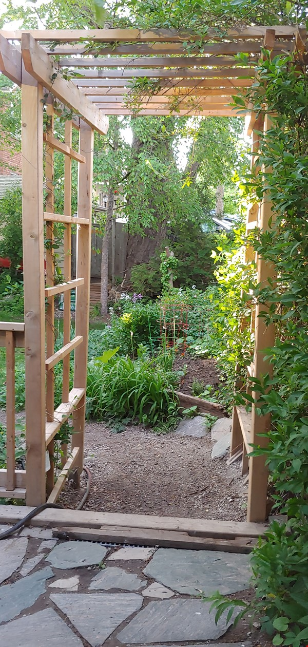 Garden Oasis - Ideal for professionals/family- 3 Bdrm  Birch Cliff Heights Home Rental in Toronto 0 - thumbnail