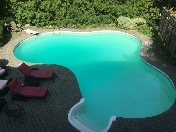 3 bedroom stunning house with pool Home Rental in Oakville 1 - thumbnail