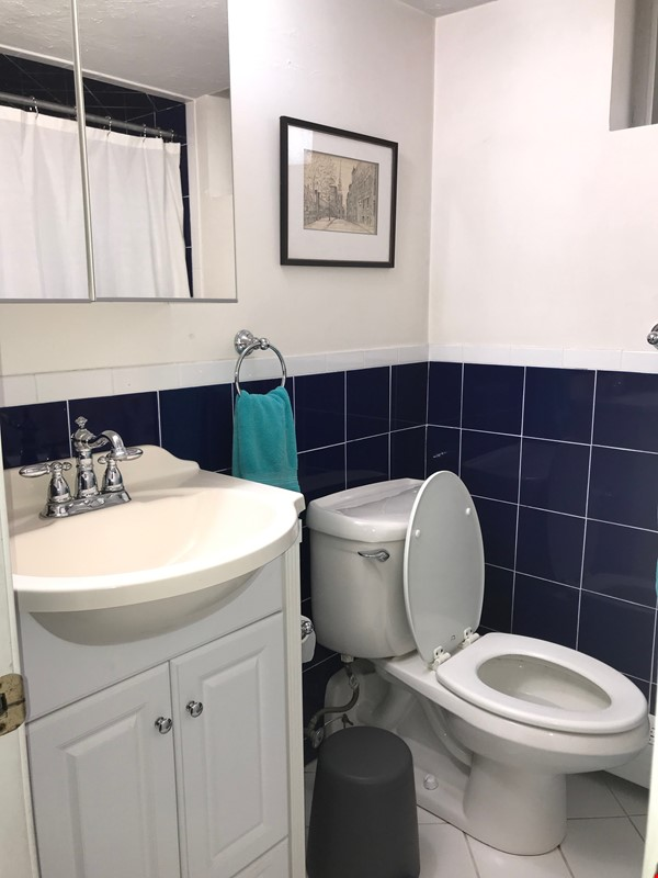 Furnished private garden level space within walking distance to Harvard Home Rental in Cambridge 4 - thumbnail