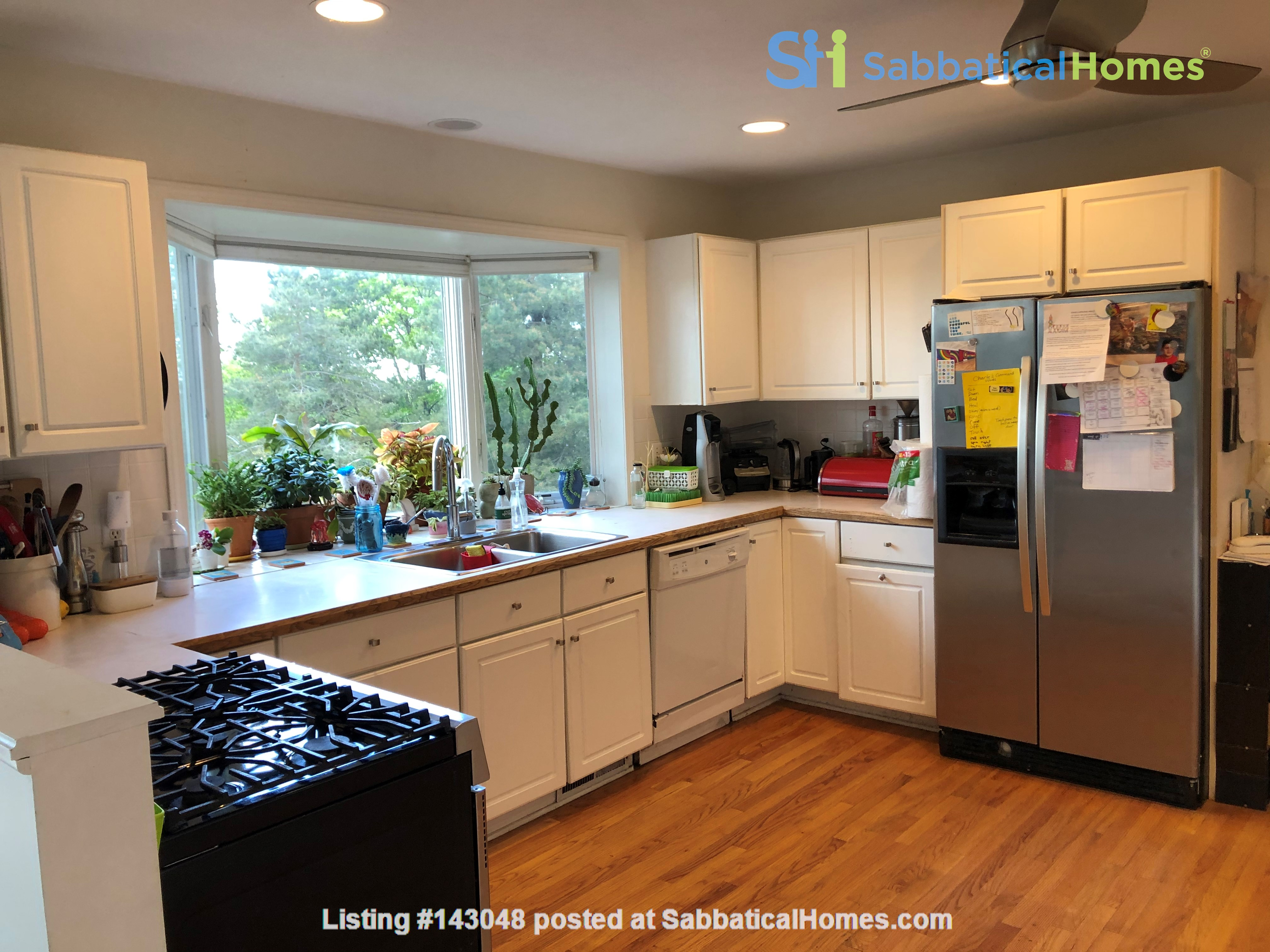 Convenient and Gracious Upstate New York--natural beauty, walk to campus Home Rental in Syracuse, New York, United States 5