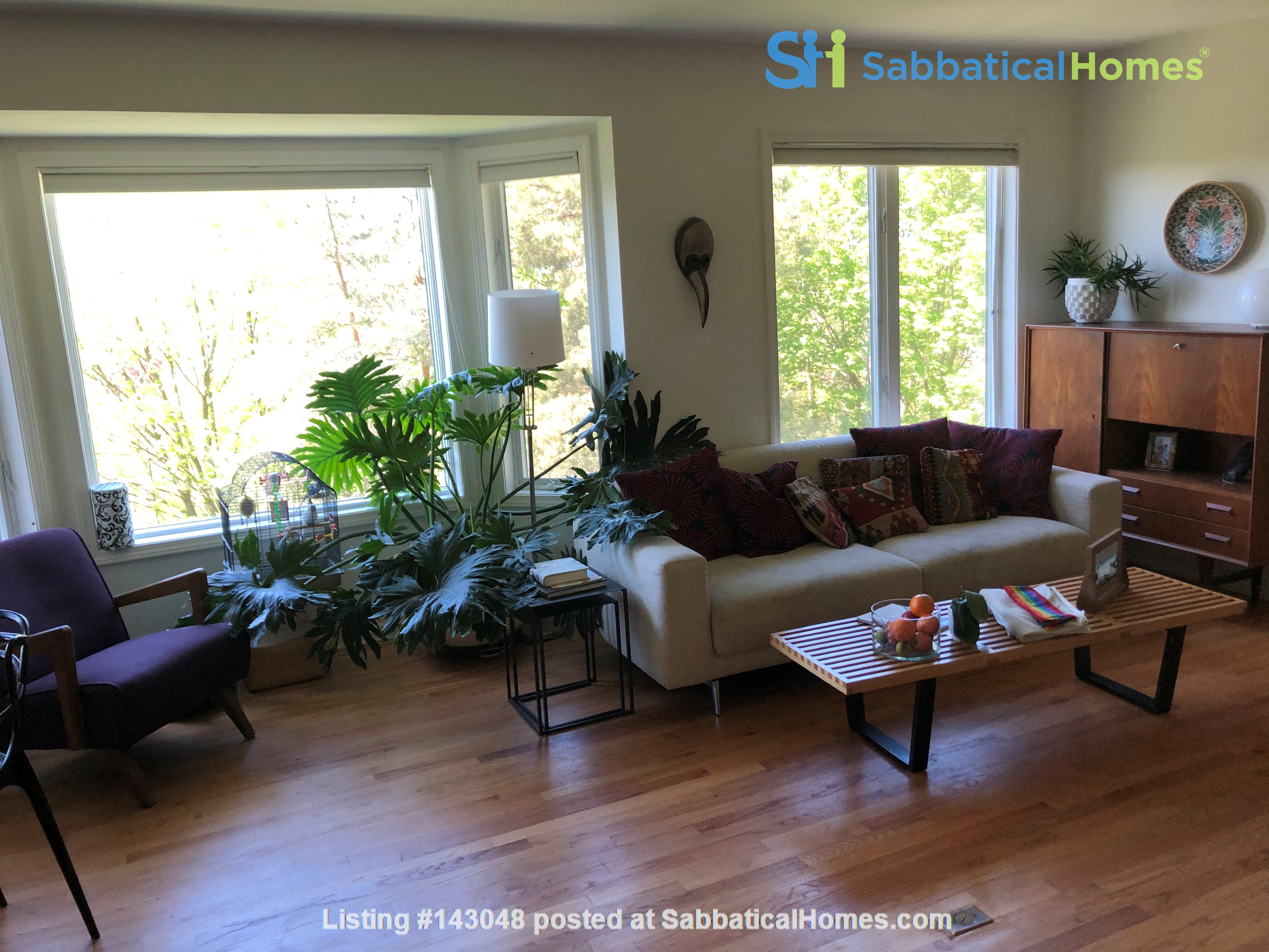 Convenient and Gracious Upstate New York--natural beauty, walk to campus Home Rental in Syracuse, New York, United States 1