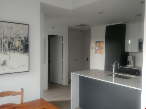 Downtown Modern/BrandNew Condo - With Gym Pool Sauna & Rooftop Pool/BBQ! Home Rental in Montréal 1 - thumbnail