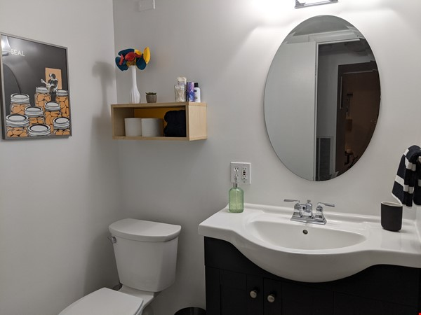 Retro basement suite with office, near DC Home Rental in Silver Spring 7 - thumbnail