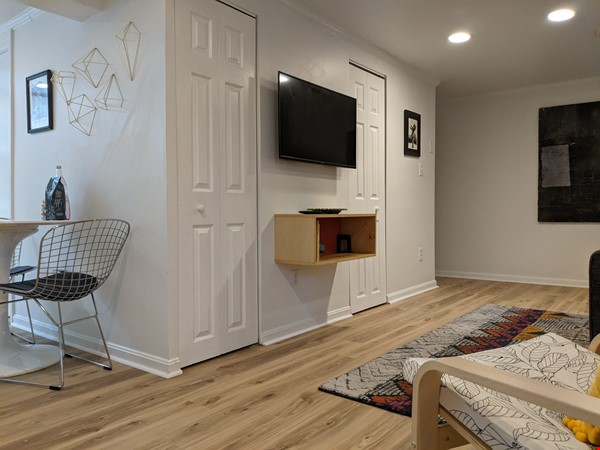 Retro basement suite with office, near DC Home Rental in Silver Spring 8 - thumbnail