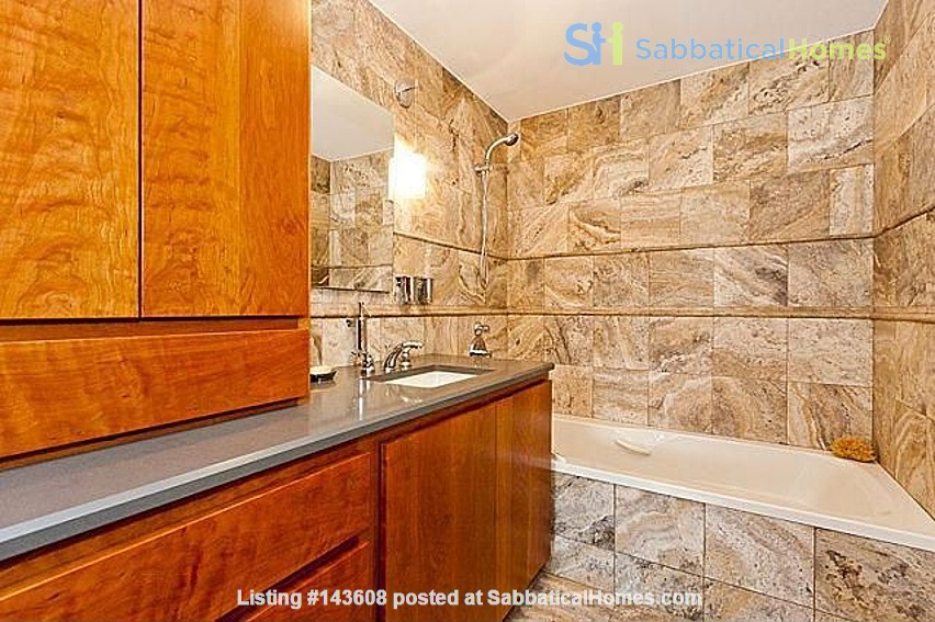 Furnished unit, top floor, gorgeous views. Near Grant Park, lake, museums. Home Rental in Chicago, Illinois, United States 7
