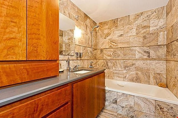 Furnished unit, top floor, gorgeous views. Near Grant Park, lake, museums. Home Rental in Chicago 7 - thumbnail