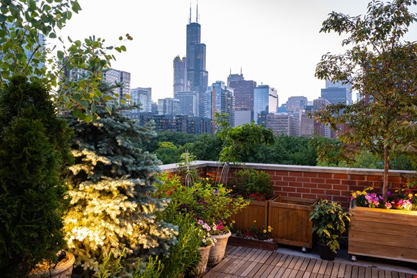 Furnished unit, top floor, gorgeous views. Near Grant Park, lake, museums. Home Rental in Chicago 0 - thumbnail