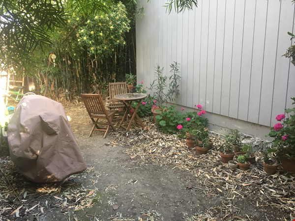 3BR, 1BA Oakland July Sublet - Negotiable Discount for Cat Sitting Home Rental in Oakland 8 - thumbnail