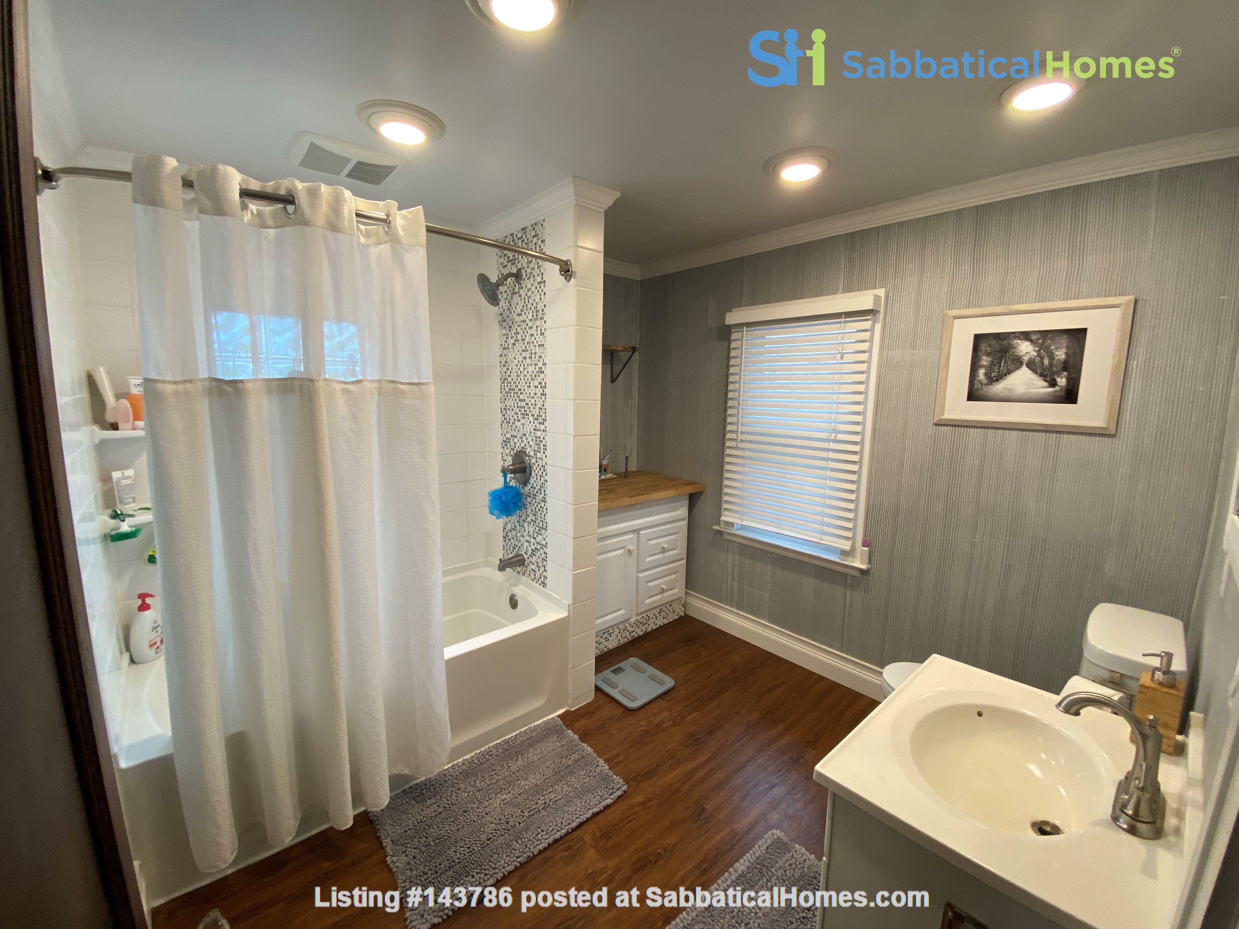 Cozy, updated 2BR near (<3mi) downtown and campus Home Rental in Lansing, Michigan, United States 7