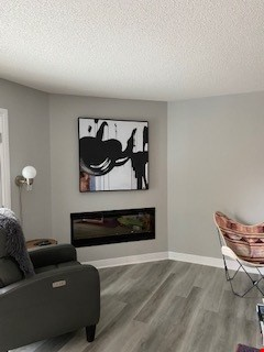 Newly renovated, furnished 4 bed, 3 bath home.  Available June 1. Home Rental in Kingston 2 - thumbnail