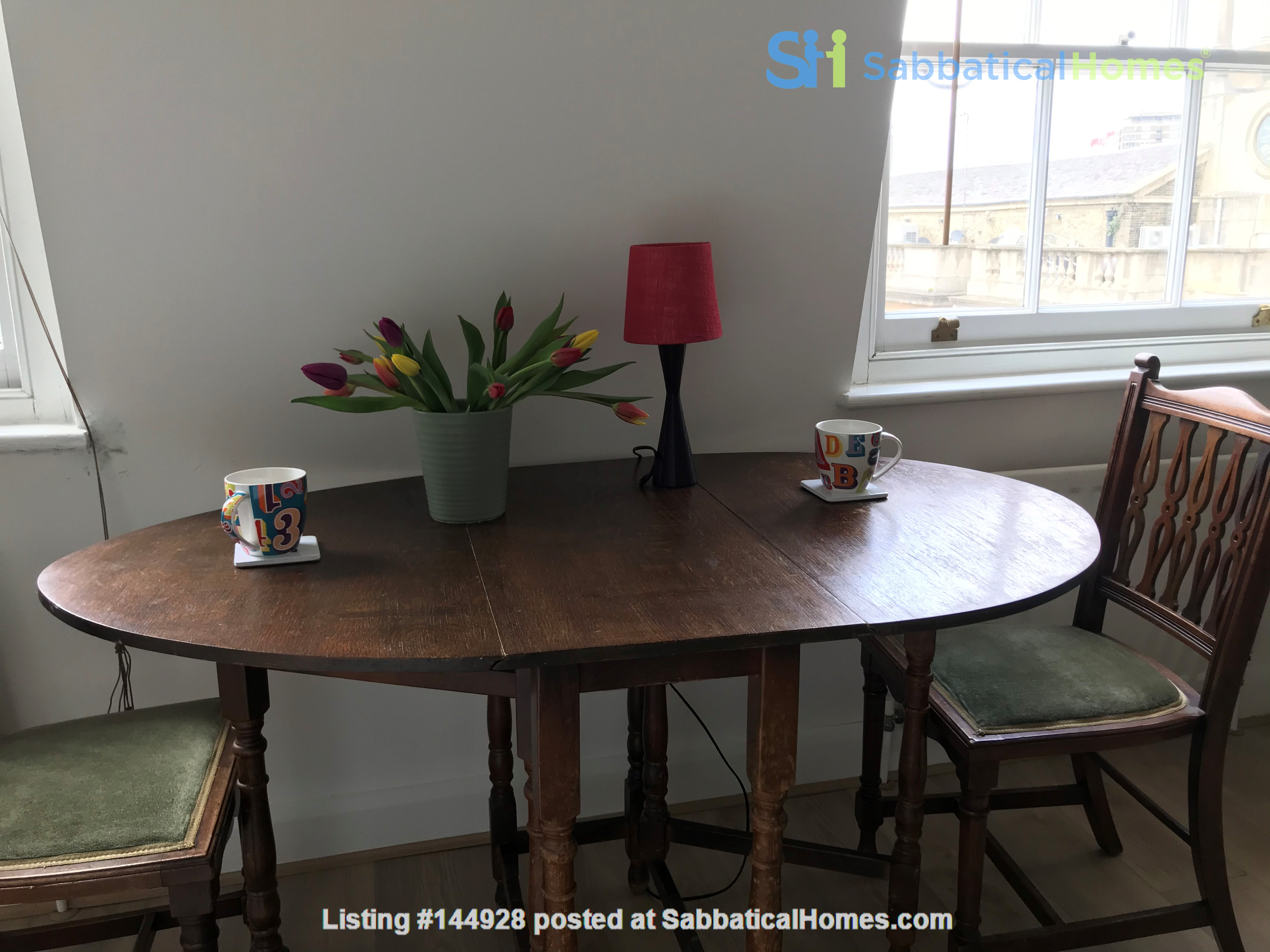 One bedroom, charming, central London flat in Cosway St, Marylebone, London Home Rental in Marylebone 7