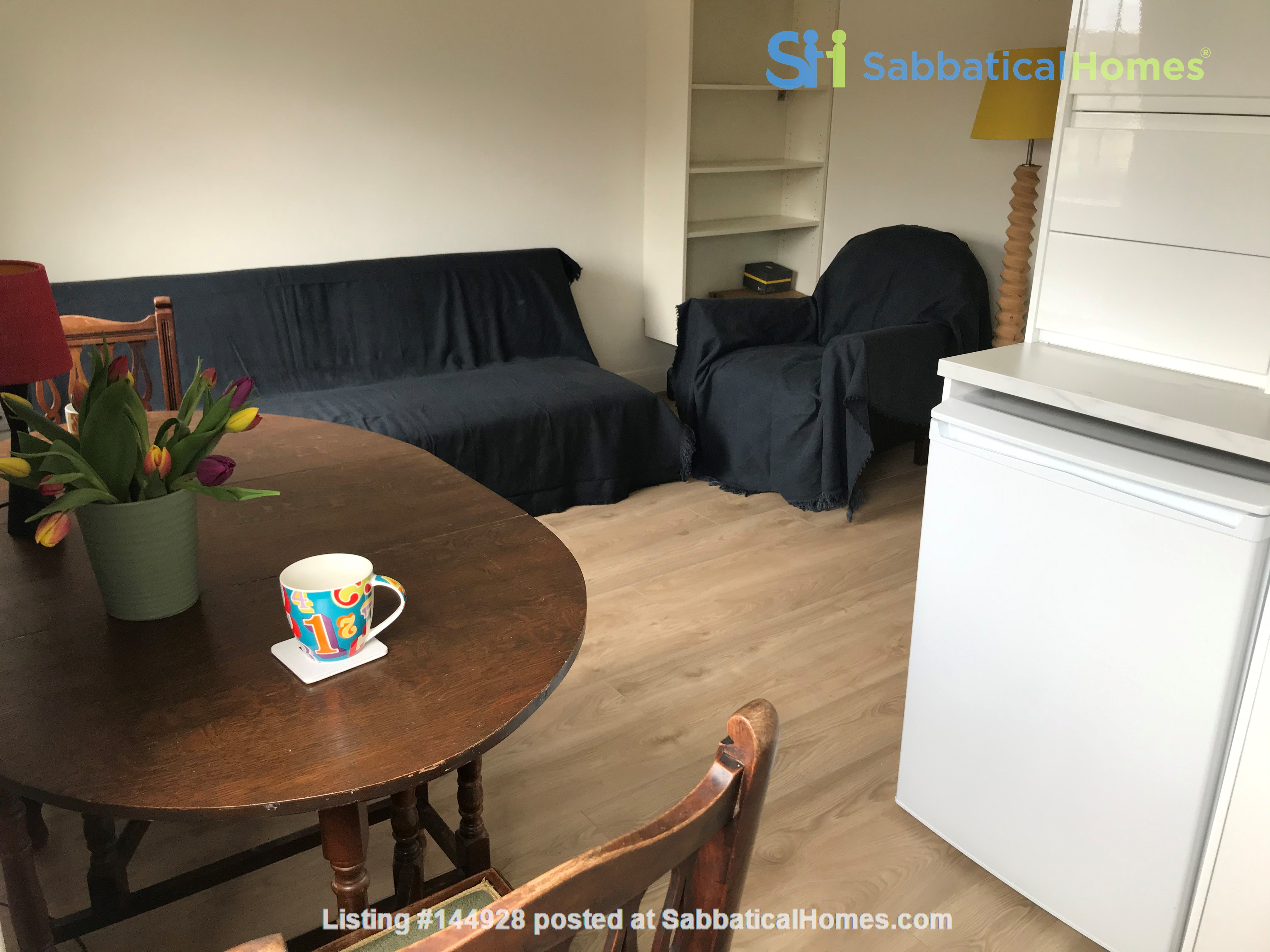 One bedroom, charming, central London flat in Cosway St, Marylebone, London Home Rental in Marylebone 9