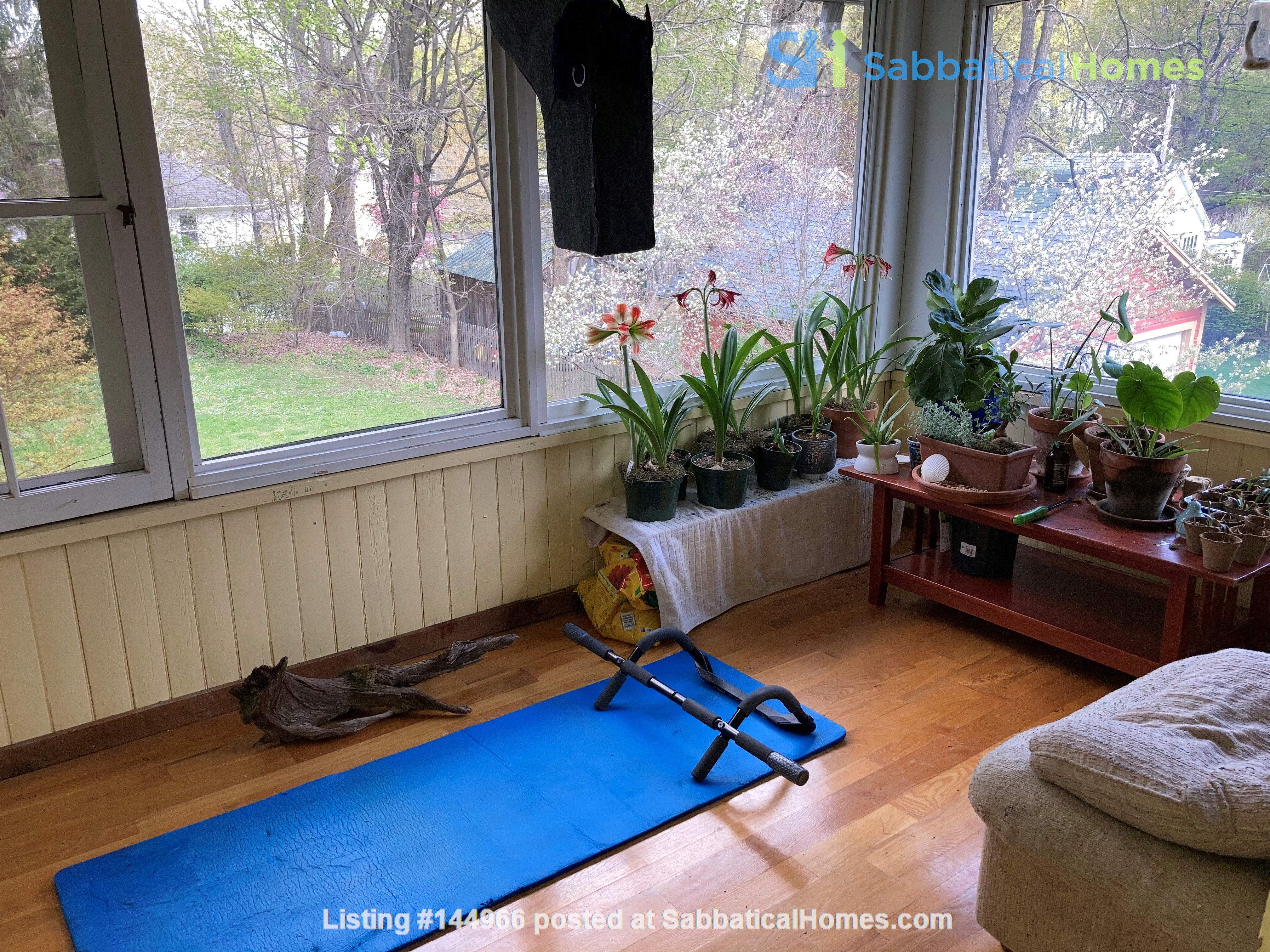 Two-Bedroom Apartment on Quiet Street; Walkable to Everything Northampton Home Rental in Northampton, Massachusetts, United States 3