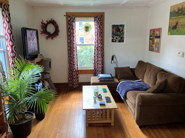 Two-Bedroom Apartment on Quiet Street; Walkable to Everything Northampton Home Rental in Northampton 6 - thumbnail