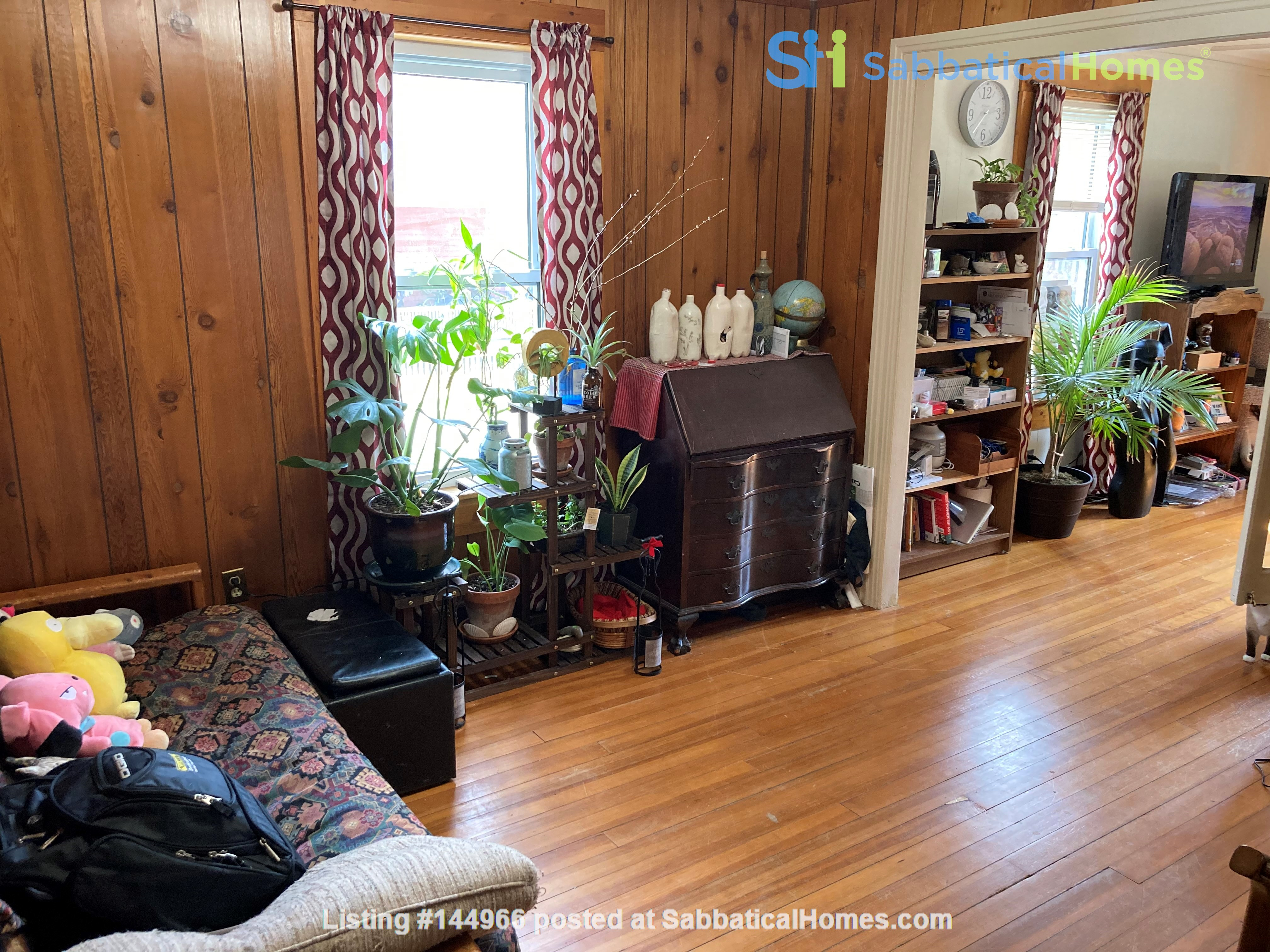 Two-Bedroom Apartment on Quiet Street; Walkable to Everything Northampton Home Rental in Northampton, Massachusetts, United States 7