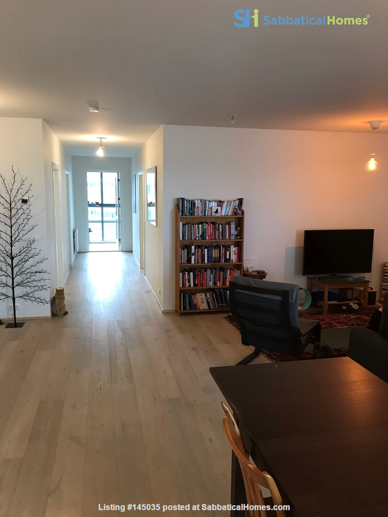 Beautiful and spacious seafront condo in Reykjavik with two cats Home Rental in Reykjavík, , Iceland 0
