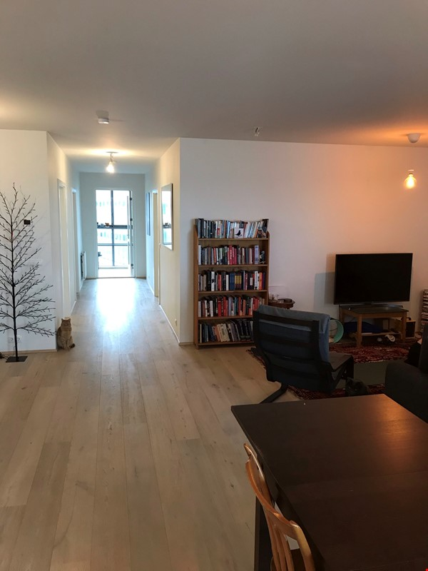 Beautiful and spacious seafront condo in Reykjavik with two cats Home Rental in RVK 0 - thumbnail