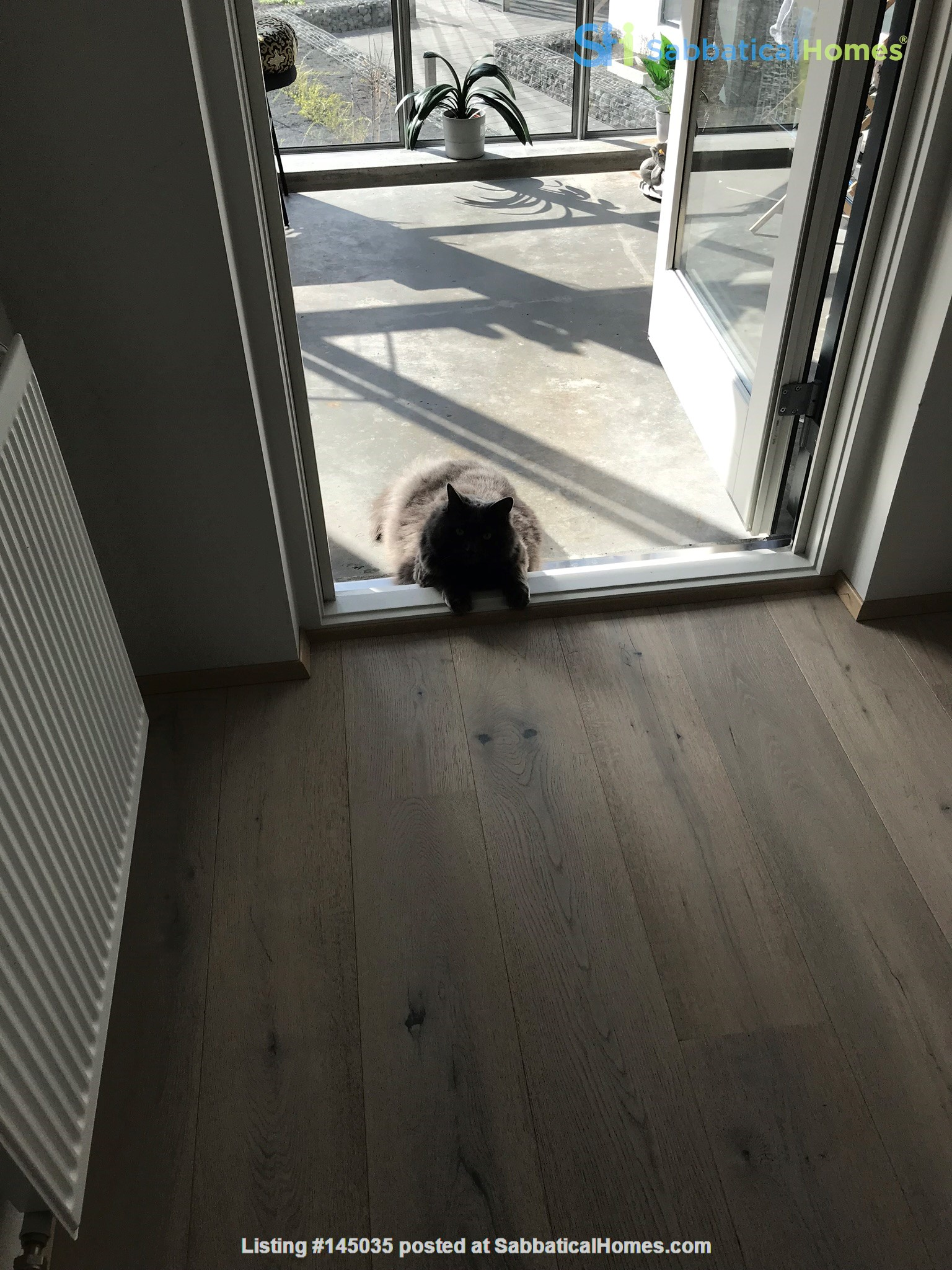 Beautiful and spacious seafront condo in Reykjavik with two cats Home Rental in Reykjavík, , Iceland 8