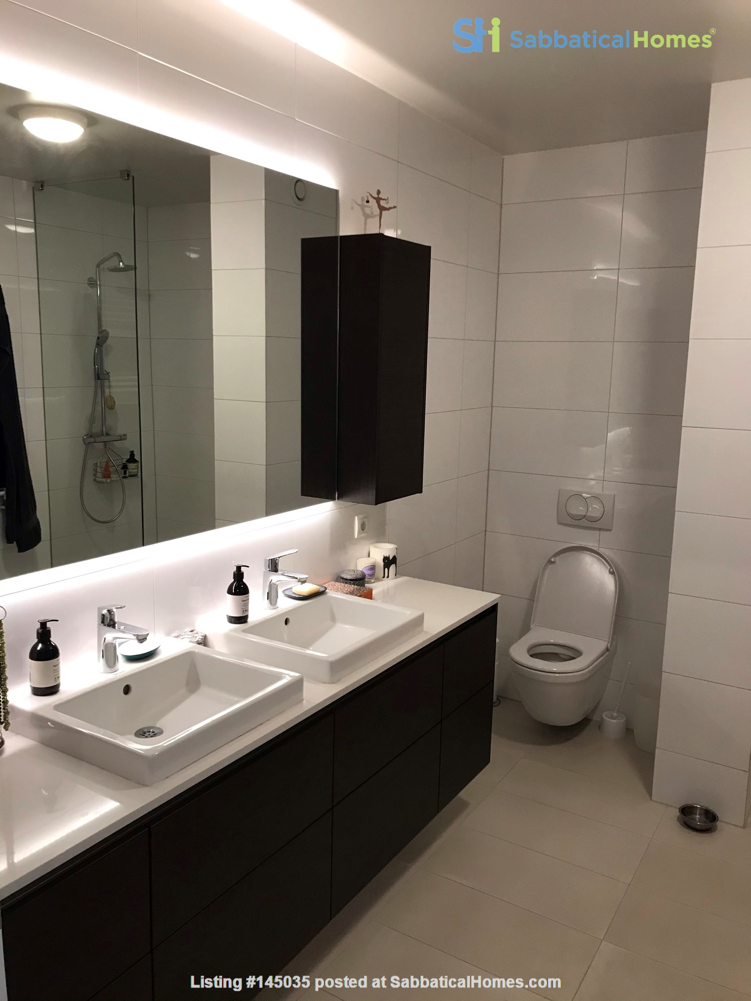 Beautiful and spacious seafront condo in Reykjavik with two cats Home Rental in Reykjavík, , Iceland 3
