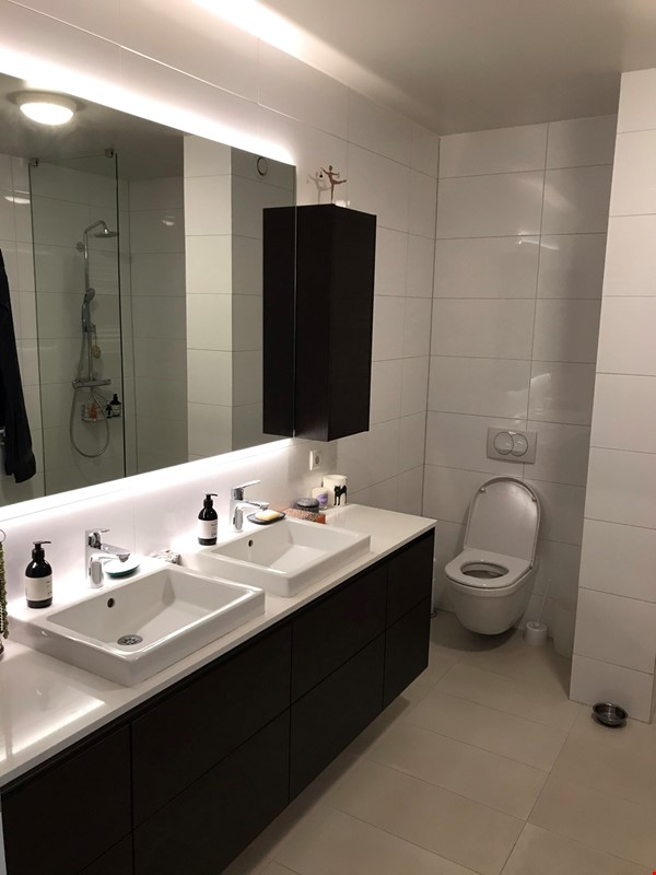 Beautiful and spacious seafront condo in Reykjavik with two cats Home Rental in RVK 3 - thumbnail
