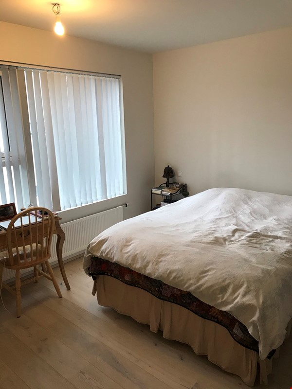 Beautiful and spacious seafront condo in Reykjavik with two cats Home Rental in RVK 5 - thumbnail