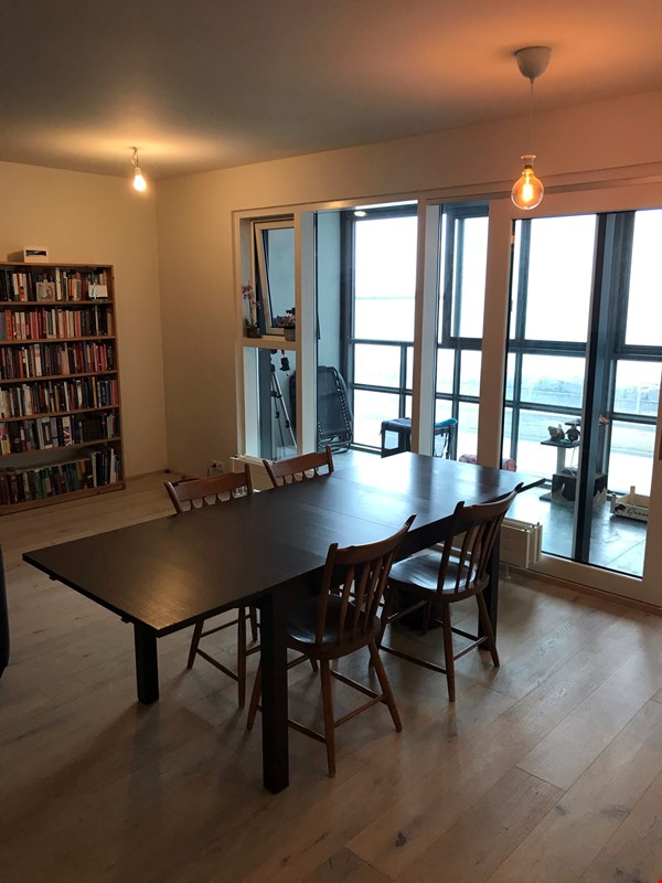 Beautiful and spacious seafront condo in Reykjavik with two cats Home Rental in RVK 2 - thumbnail