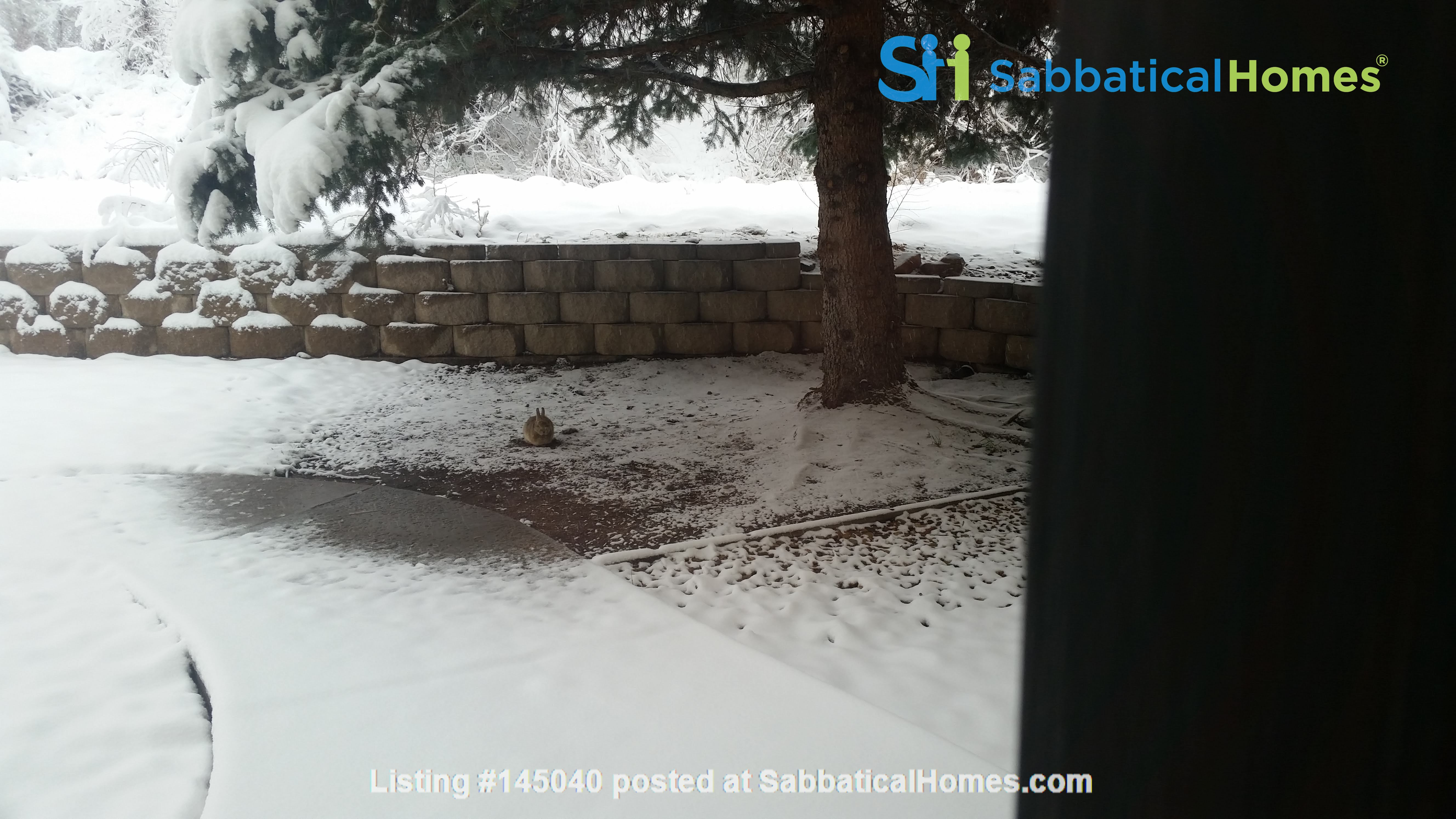 Hiking and biking paradise in beautiful Golden, Colorado - Spring 2022 swap Home Exchange in Golden 8
