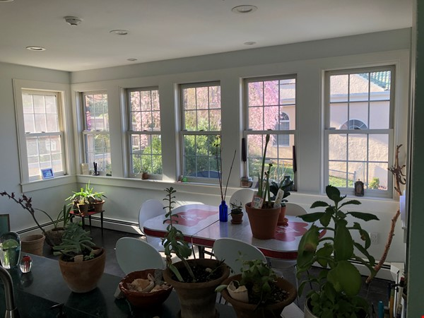 Large, gorgeous house & garden within walking distance of Brown & RISD Home Rental in Providence 4 - thumbnail