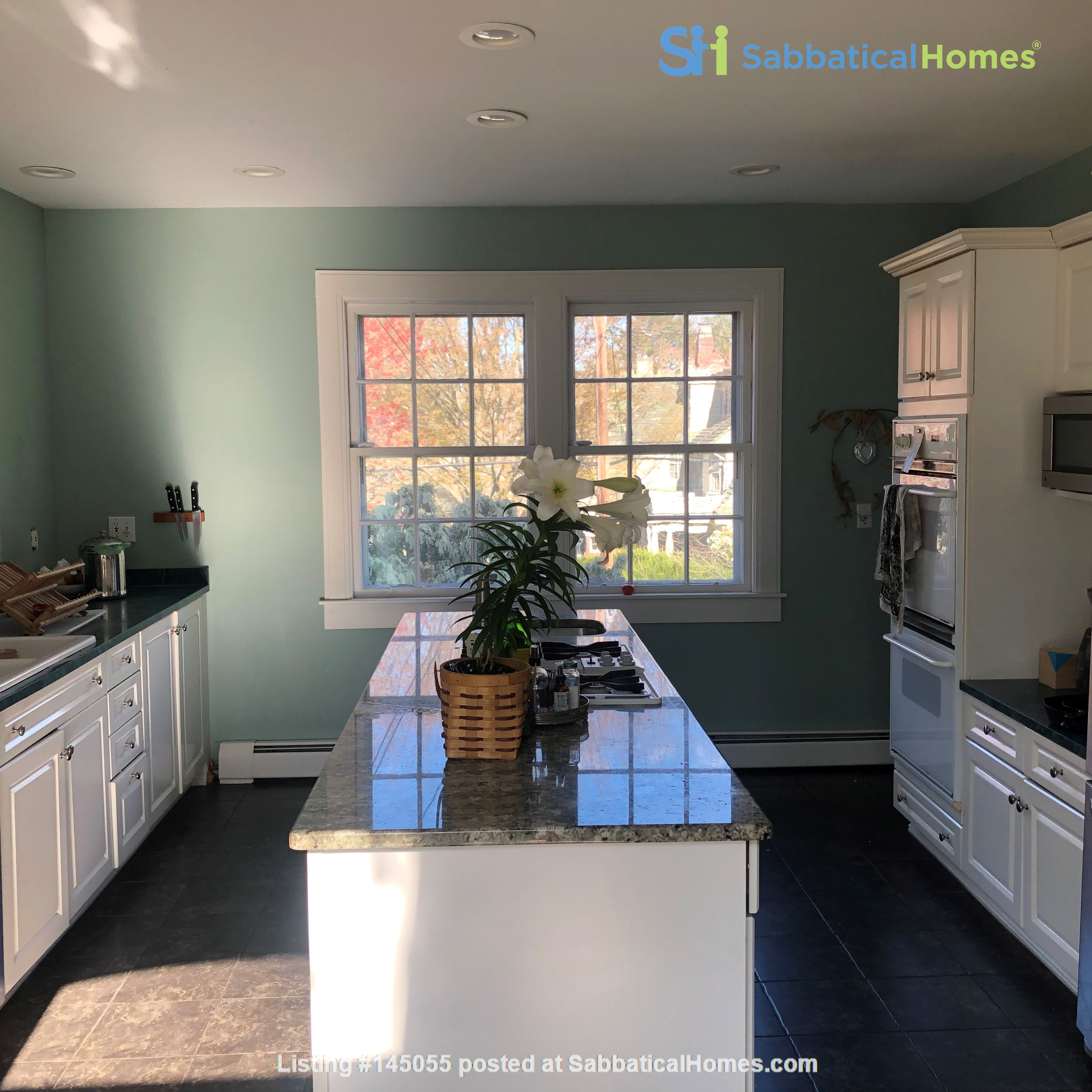 Large, gorgeous house & garden within walking distance of Brown & RISD Home Rental in Providence, Rhode Island, United States 3