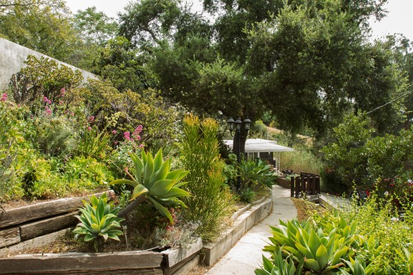 Secluded hide away in the hills Home Rental in Los Angeles 0 - thumbnail