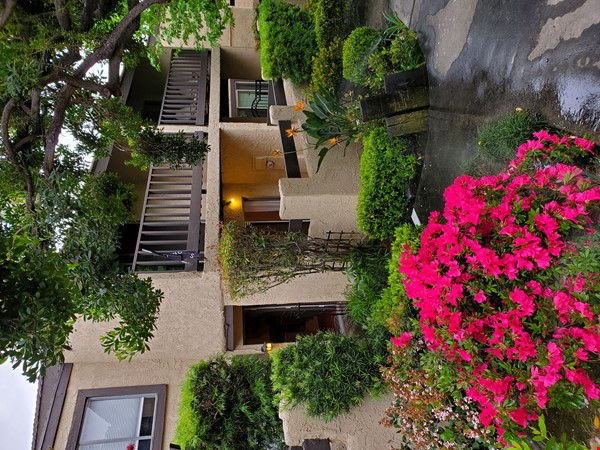 Looking for a beautiful place in Sierra Madre, CA, near to Caltech and JPL? Home Rental in Sierra Madre 0 - thumbnail